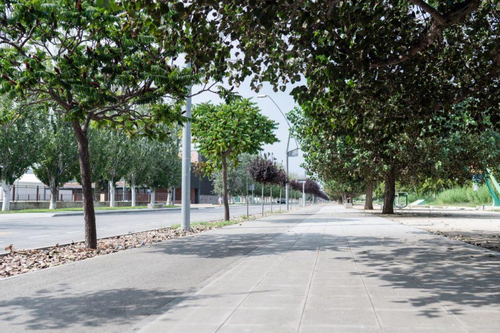 PASSEIG DEL CANAL MARÍTIM - AMPOSTA